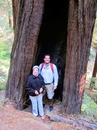 Posing with very old Redwood Trees